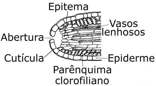 epi.9