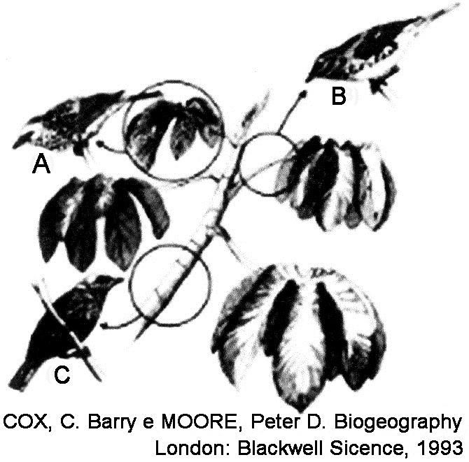 Os parasitas intracelulares que fora de uma jaula existem na forma