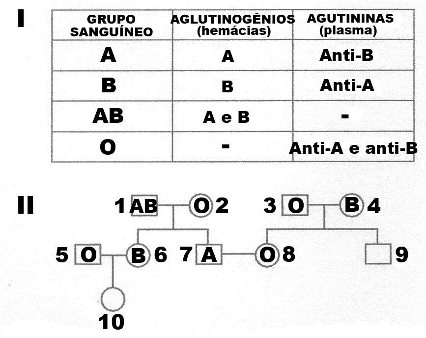 Fabuloso Ciclo do Nitrogênio (N), Oxigênio (O), Fósforo (P) e Enxofre (S  TP05