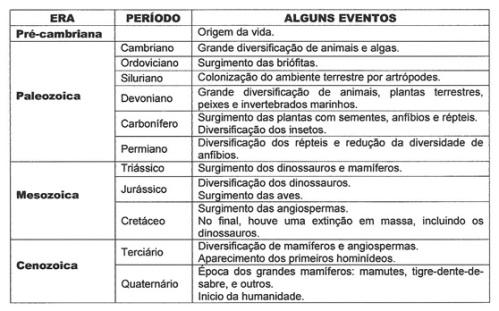 tabela.2