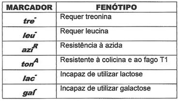 tabela.1