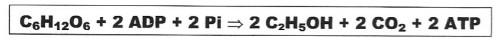equação.etanol