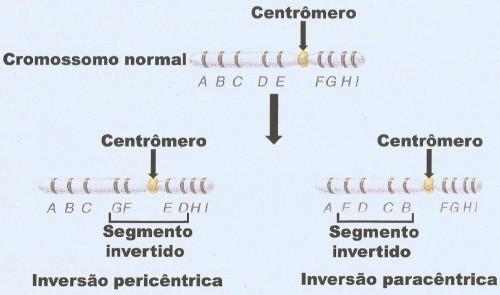 inv.per.para